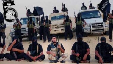 خبير الماني: تنظيم «الدولة الإسلامية» على وشك التفكك والانهيار