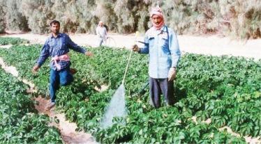 """""""الطارق"""" تفتتح خطاً جديداً لإنتاج العبوات البلاستيكية للمبيدات"""