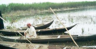 خبير يحذر من مخاطر الصيد الجائر في الأهوار العراقية