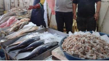 علوة البصرة تتميز ببيع مئات الأنواع من الأسماك النهرية والبحرية