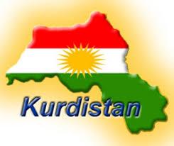 صالح مسلم: لن نكون أداة  لتنفيذ خطط المنادين بالدولة الكردية