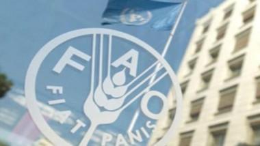 «فاو»: للتجارة دور مهم في تعزيز الأمن الغذائي