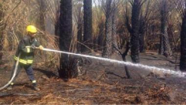 ديالى.. إخماد حريق عُدّ الأكبر من نوعه في المحافظة