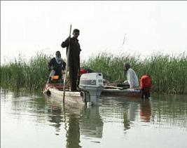 «ذي قار»: اتفاق على زيادة الإطلاقات المائية لتغذية أهوارها
