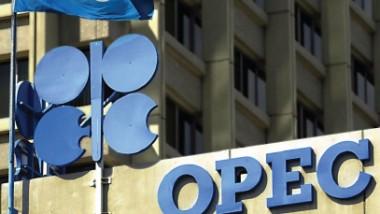 «أوبك» قلقة من تراجع النفط
