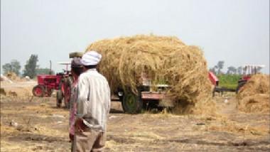 «الزراعة« تستعد لتهيئة متطلبات خطة الموسم الشتوي