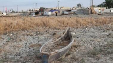 ذي قار تدعو الحكومة للتدخل لإنقاذ مناطق الأهوار من الجفاف