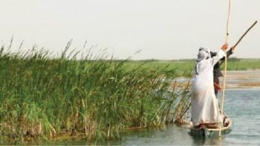الموارد المائية: إحياء أهوار الجبايش بـ 175 مليون متر مكعب