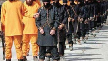 «داعش»: نهاية حقبة «الذئب الوحيد»