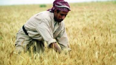 تطوّر الواقع الزراعي ودوره في دعم الاقتصاد الوطني