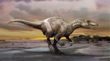 ديناصور شبه مكتمل في الأرجنتين
