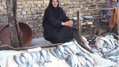 سمكة الصبور تحتاج إلى إجراءات لحمايتها من أجل تكاثرها