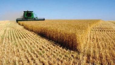 الزراعة تدعو المسوّقين لمحاصيلهم مراجعتها لصرف مستحقاتهم