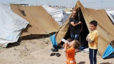 المنظمة الدولية للهجرة تواصل إغاثة النازحين من نينوى