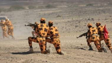 الجيش اليمني يقترب من السيطرة على منطقة باب المندب