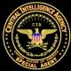 """وثائق سرية تظهر دعم """"سي. آي. ايه"""" للإخوان المسلمين"""