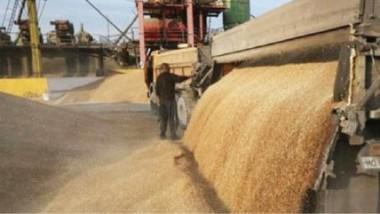 التجارة تباشر بصرف مستحقات مسوقي الحنطة للموسم الحالي في واسط