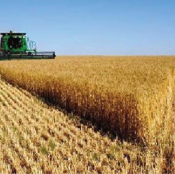 اتفاقية تعاون بين العراق والأردن بالمجال الزراعي