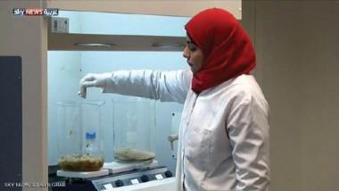 خبراء مصريون يصنعون أول أنموذج لأكياس صديقة للبيئة