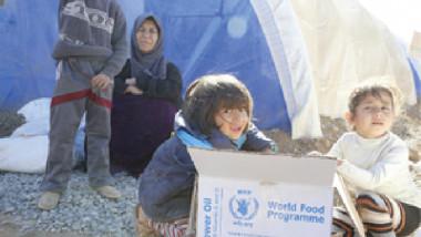 «البرنامج العالمي» يبدي قلقه إزاء سوء التغذية بين الأسر النازحة