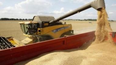 «الزراعة النيابية»: أسبوعان على صرف مستحقات الفلاحين