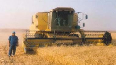 مراكز التسويق تتسلم محصول الحنطة من الفلاحين والمزارعين