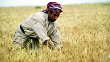 الرقابة المالية تؤشر ضعفاً وازدواجية لدى وزارة الزراعة وتشكيلاتها