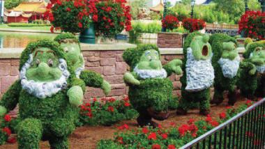"""""""الحديقة المنزلية """" للترويح عن النفس من ضغوطات الحياة التي يمر بها الإنسان"""