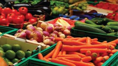 «الزراعة»: المنتجات المستوردة تغزو الأسواق والفلاح أول الضحايا