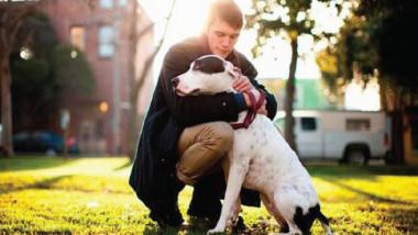 ما هو سبب قرب الكلاب من الإنسان وحمايته على مر السنين؟
