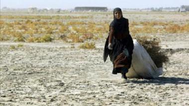 """""""الزراعة"""" تتخذ سلسلة إجراءات لمكافحة التصحّر المستفحلة في العراق"""