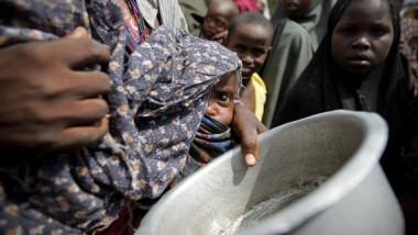 نحو 800 مليون شخص يعانون من الجوع بالعالم