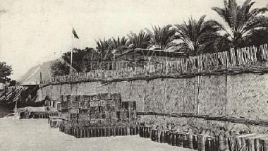 أول دائرة زراعة في بغداد