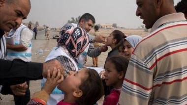 """""""الصحة"""":شركات عالمية رصينة تزودنا بالأمصال ضد مرض شلل الأطفال"""