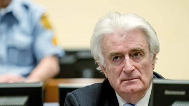 """الحكم بالسجن مدى الحياة على """"جزار البوسنة"""""""