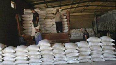 «تصنيع الحبوب» تعتمد المعايير القياسية والفعلية في خطتها السنوية المقبلة