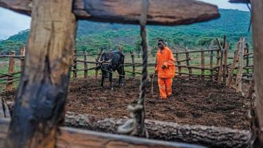 المزارعون أول ضحايا الاحتباس والجوع