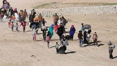 عودة 216 ألف أسرة نازحة الى الأنبار