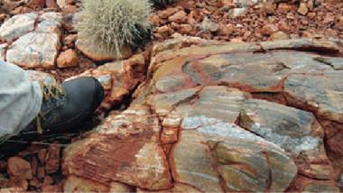 متحجرات عميقة القدم تحدد بداية الحياة على الأرض