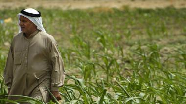 القطاع الزراعي في العراق وسبل النهوض