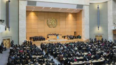 اليوم .. المجلس التنفيذي لمنظمة الصحة العالمية يعقد اجتماعاته في جنيف