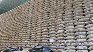 إنتاج العراق من الرز أكثر من 104 ألف طن