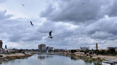 هذا أوان النوارس على ماء بغداد