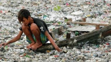 أضرار البلاستيك الكثيرة على البيئة والكائنات الحية