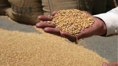 التجارة تناقش تخصيصات تأمين المواد التموينية وشراء الحبوب المحلية