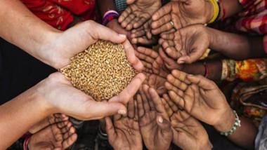 دراسة: تغيّر المناخ يزيد مخاطر انعدام الأمن الغذائي حول العالم