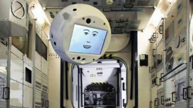 """أول """"دماغ طائر"""" يرسل إلى الفضاء"""