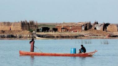 الحمى النزفية تستوطن العراق والمنطقة منذ الثلاثينيات وتظهر في الريف بين سنوات وأخرى