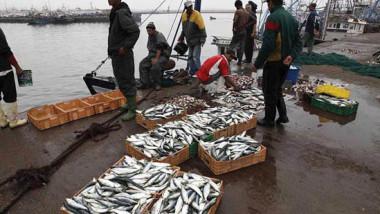 المغرب يتفاوض مع الاتحاد الأوروبي لتجديد اتفاق الصيد البحري