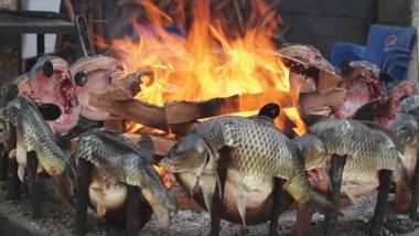 انتشار ظاهرة شي الأسماك داخل المناطق السكنية